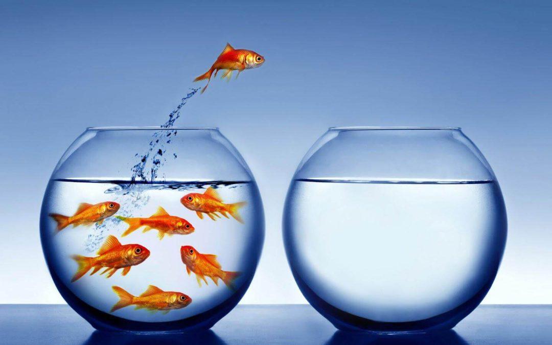 No le tengas miedo al cambio